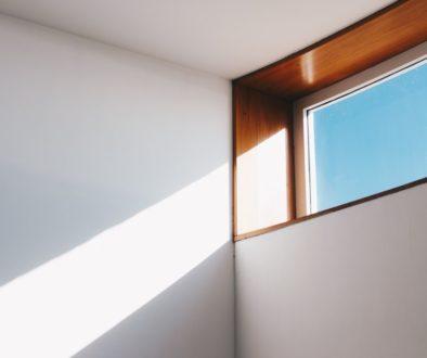 New windows or Window tint